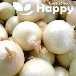 White Onion Avalon - 500...