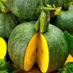 Squash 'Ambar' - 15 seeds...